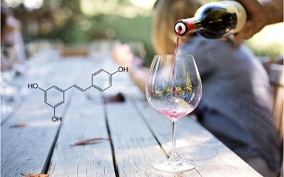 Cómo el vino puede ayudar a prevenir enfermedades cardiovasculares