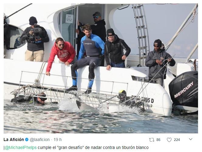 Michael Phelps vs Tiburón Blanco: El desafío que jamás visto